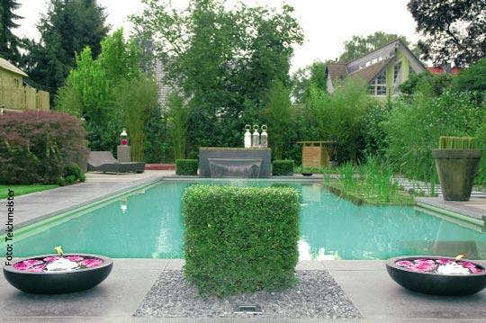 die naturoase schwimmteich schwimmbad zu. Black Bedroom Furniture Sets. Home Design Ideas