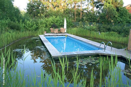 schwimmbad im teich schwimmbad zu. Black Bedroom Furniture Sets. Home Design Ideas