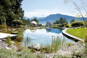 Naturpools und Schwimmteiche: Der richtige Schwimmbadtyp für Sie