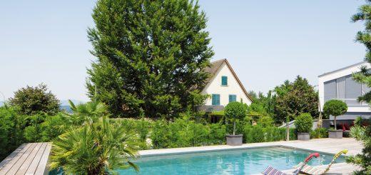 Betont-klassisch_Ein-sportlich-klassischer-Pool,-der-mithilfe-einer-vollautomatisierten-Technik-besonders-energieeffizient-ist