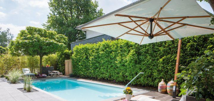 Family-Pool_Das-Objekt-zeigt,-dass-selbst-in-kleineren-Gärten-durch-eine-geschickte-Planung-ein-Pool-entstehen-kann,-an-dem-sich-eine-gesamte-Großfamilie-erfreut