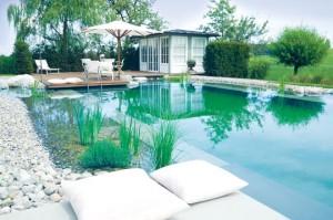 Im Bio-Schwimmbad natürlich baden